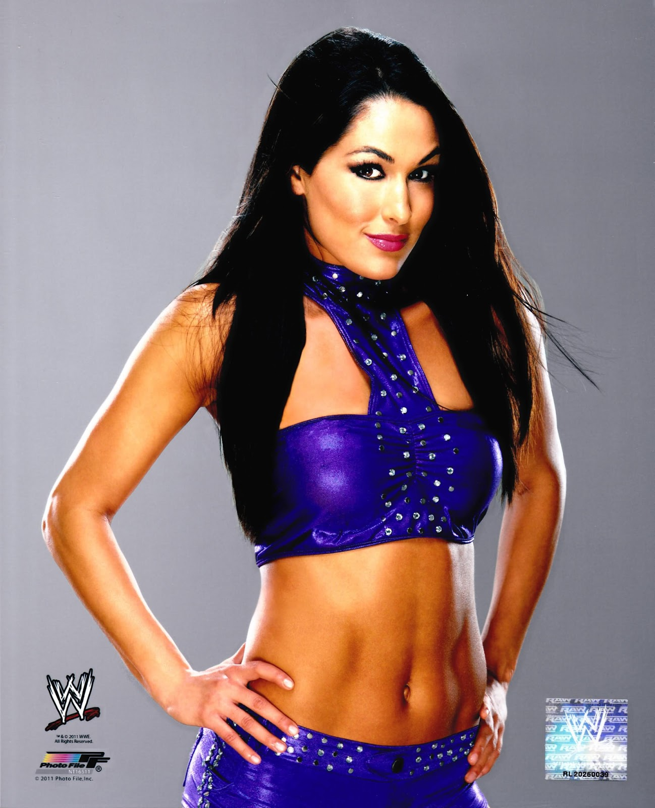 Wwe wrestling raw smackdown the divas nikkie bella - Diva nikki bella ...