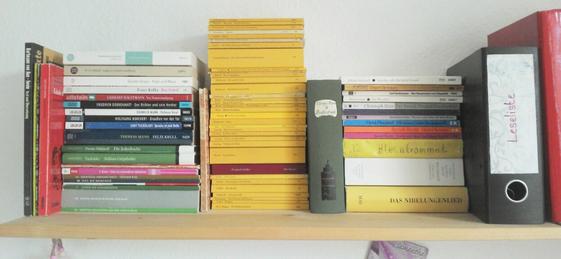 Regal mit Unibüchern