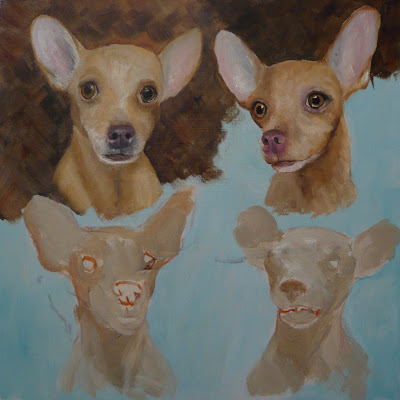 work in progress of chihuahua oil painting