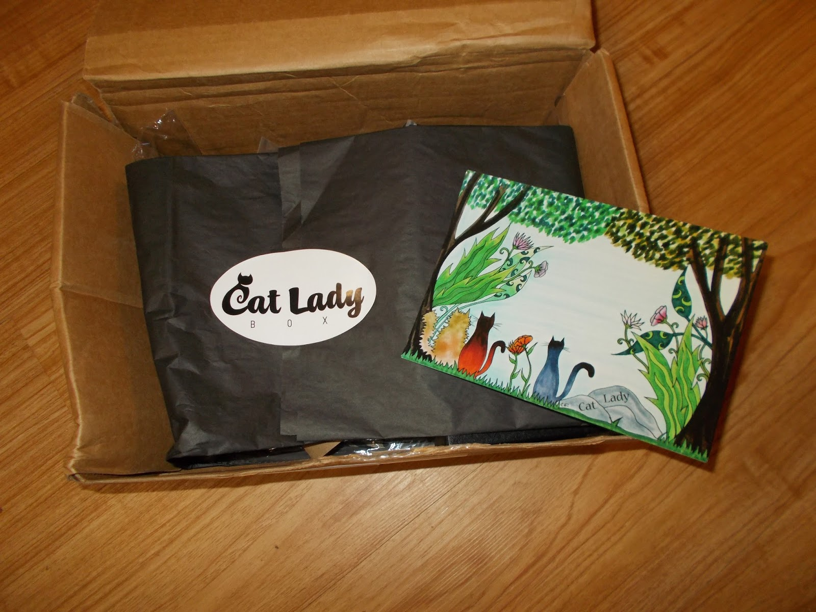 Sweetpea helped to open the box and check out the wonderfully presented gifts inside. Each month the Cat Lady Box includes hand picked cat themed items sure ...