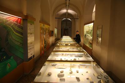 Museo di Geologia e Paleontologia