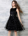 Sleeveless Black Pearl Beaded Lace Overlay Flare Dress