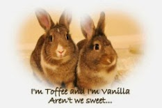 My Sweet Bunnies
