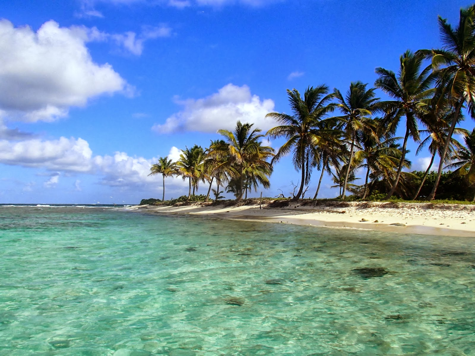 desert island Deserted island escape, you're trapped on an abandoned island you'll need to solve puzzles and uncover lots of hidden objects in order to make it back to.