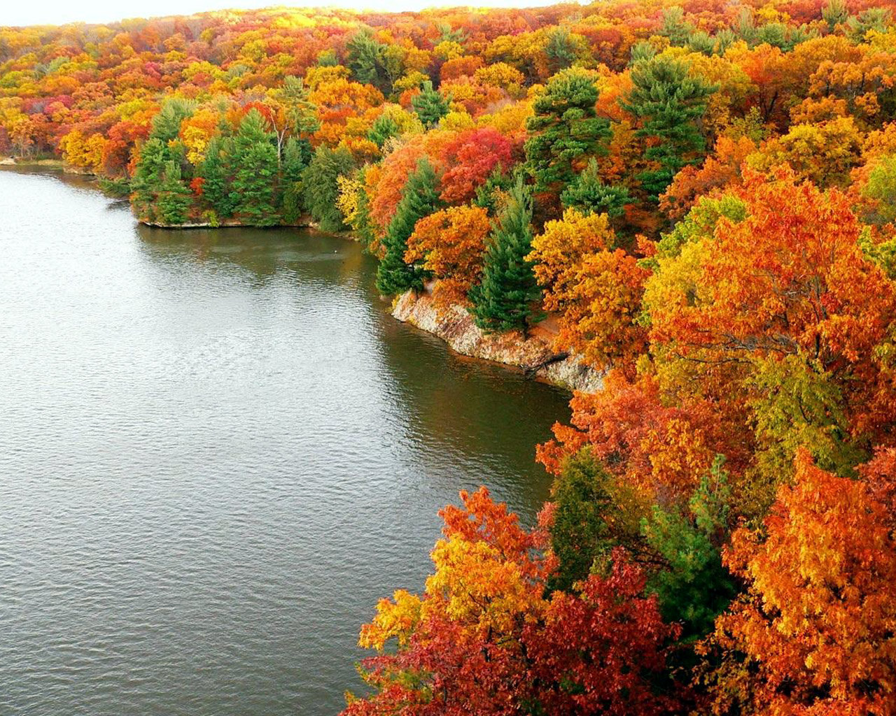 http://3.bp.blogspot.com/-Tw39kQAZFCc/TqFd7MayA7I/AAAAAAAAA-U/O9UvQ5Q0YaY/s1600/cool-autumn-wallpaper.jpg