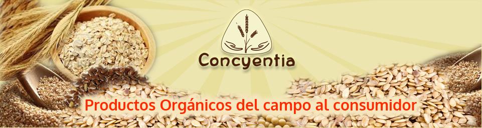 Concyentia