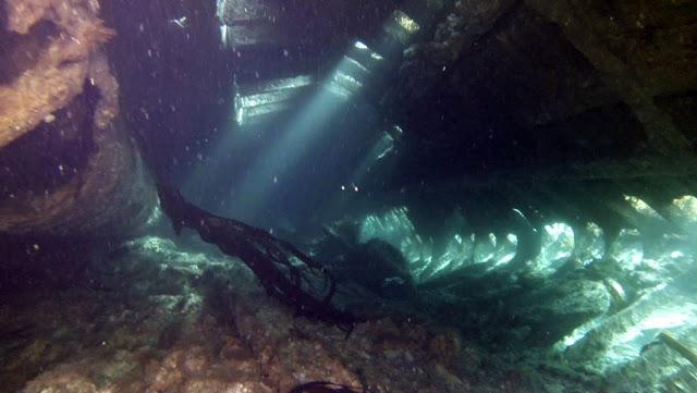 Interior del Tabarka