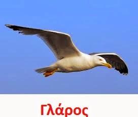 https://dl.dropboxusercontent.com/u/72794133/%CE%A0%CE%9F%CE%A5%CE%9B%CE%99%CE%91/SeaGull1.wav