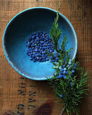 Glorious blue Juniper berries