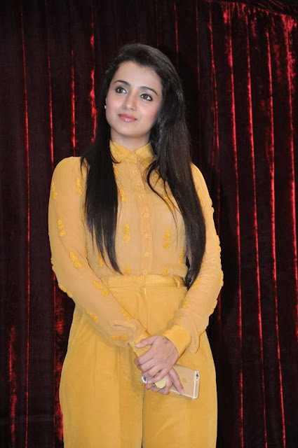 Trisha Latest Stills At Cheekati Rajyam Movie First Look Launch