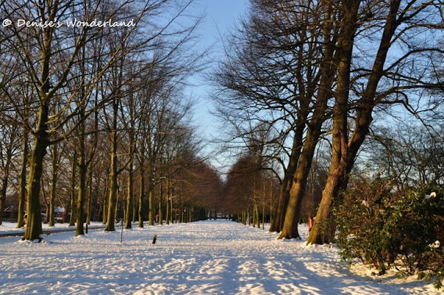 Clingendael Park, The Hague