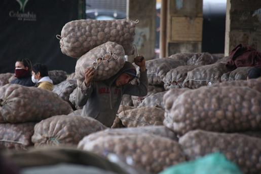 Gobierno de Boyacá y Ministerio de Agricultura trabajan para garantizar el abastecimiento de productos agropecuarios en el país