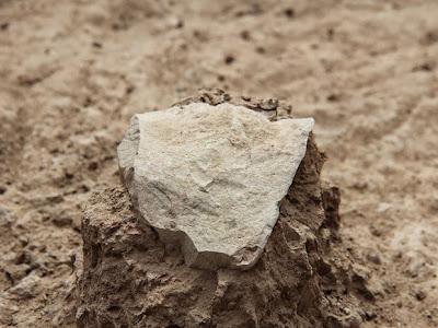 Ancestrais humanos criaram ferramentas de pedra antes do que se imaginava