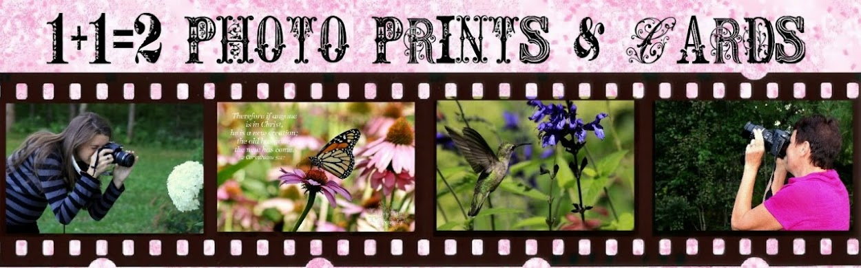 1+1+2 Photo Prints & Cards