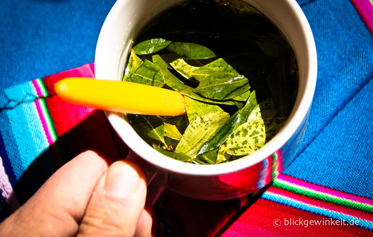 Coca-Tee, Bolivien