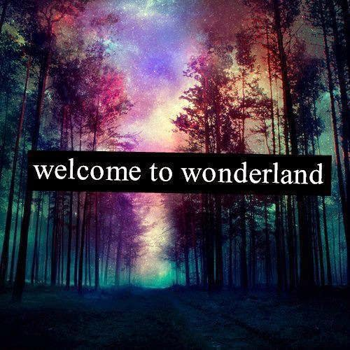 Welcome to Wonderland...