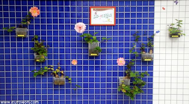 Plantas en macetas plásticas, en la estación de Yeongdungpo