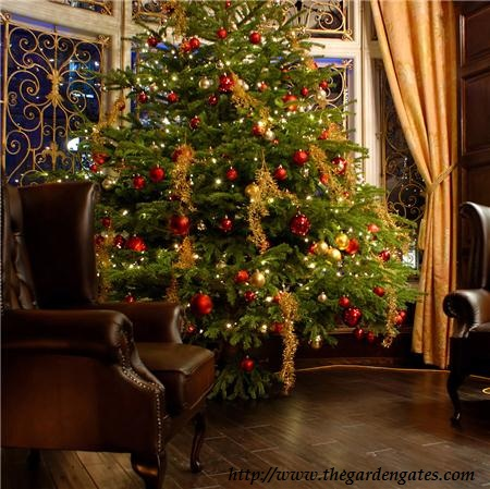 christmas is fast approaching it will be september next month hand before we now it stores are busy with people buying christmas trees