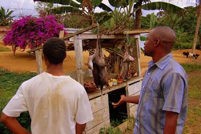 Menu Makanan Unik dari Afrika terungkap.net