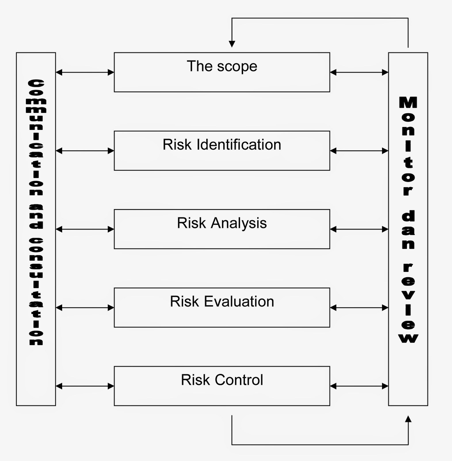 Principles of Risk Management and Patient Safety by Barbara J. Youngberg (2010,