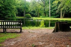 New York enjoys increase in State Park and Campground attendance