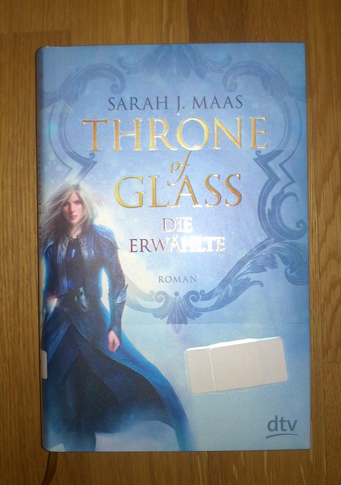 Lesedetektiv-Throne of Glass 1