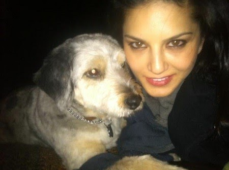 Sunny leone with puppy