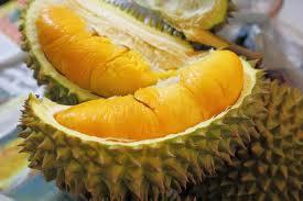 Khasiat Durian, Kelebihan Buah Durian