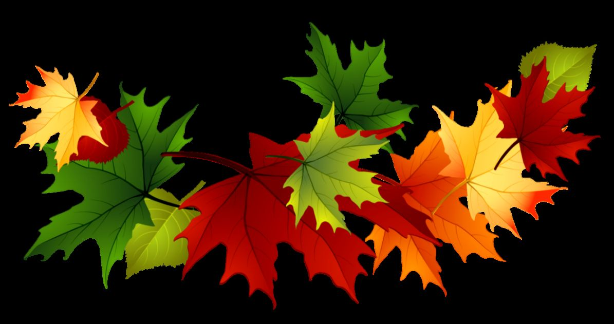 Image   Fall autumn leaves clip art transparent background 167144