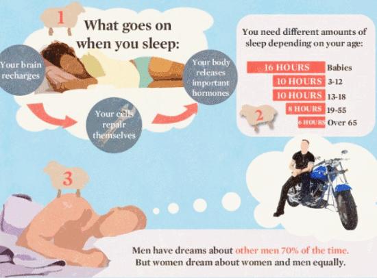 Info - 16 Perkara yang korang tidak tahu Tentang Tidur