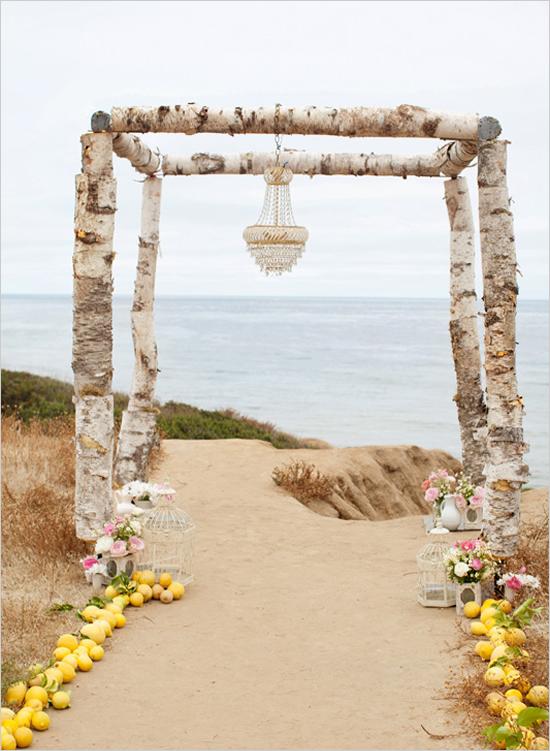 birch wood wedding arch