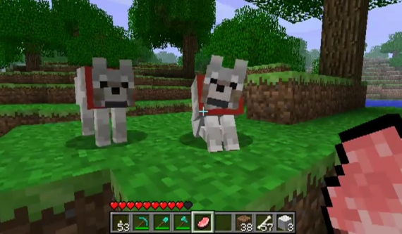 how to make a wolf a pet in minecraft