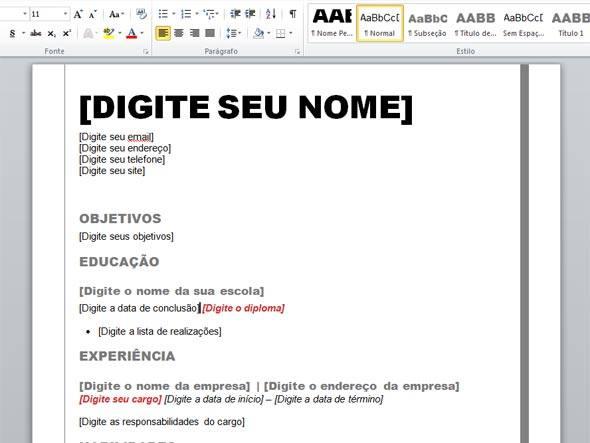 Modelo de Curriculum Vitae - Formato Profesional