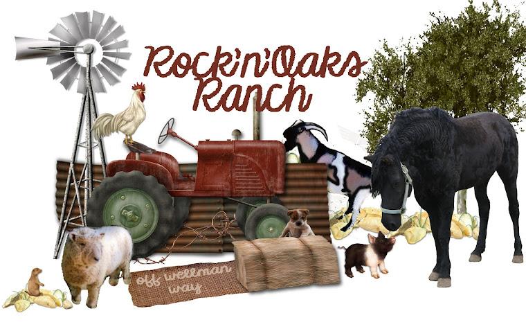 rocknoaksranch.com