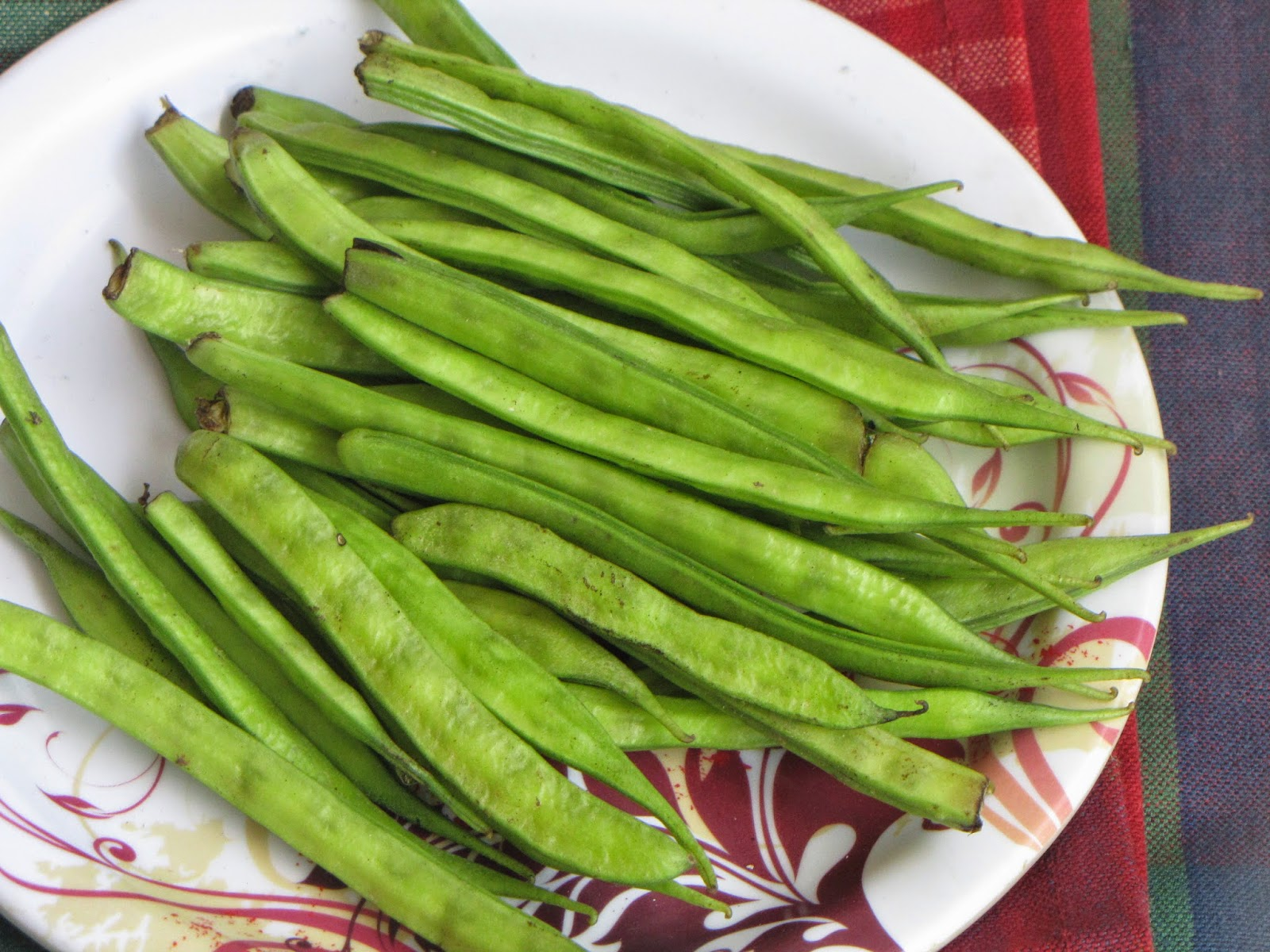how to grow guar beans