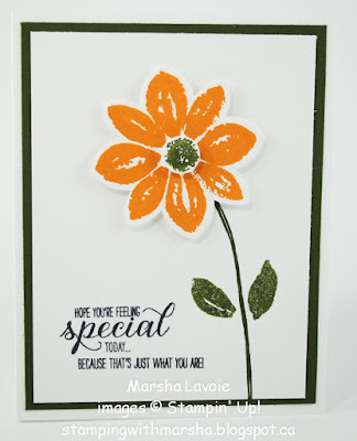 garden in bloom stampin up, petal potpourri