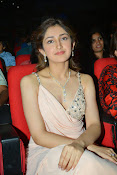 Sayesha saigal latest glamorous photos-thumbnail-4