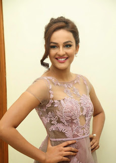 Actress Seerat Kapoor Pictures in Long Dress at Tiger Audio Launch  53