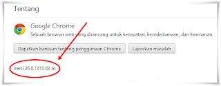 Chrome Version,versi google chrome,update chrome