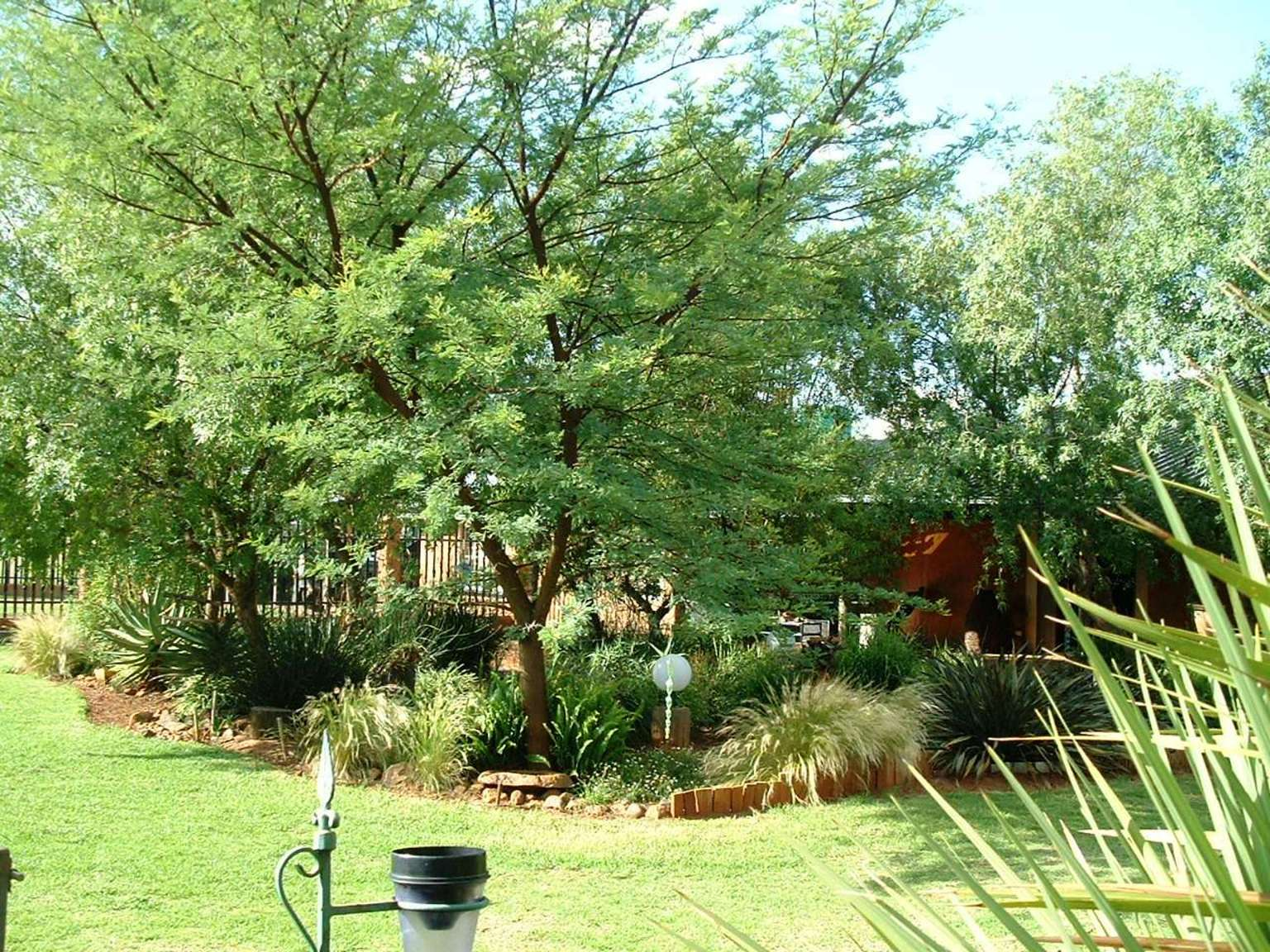 Gardening In Africa Surrounded By Karee 39 S