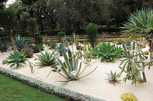 12 maravillosos jardines de cactus como sembrar el - Jardines con cactus y piedras ...
