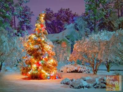 Hot news blog wir bloggen wow weihnachten und - Christbaumkugeln eisblau ...