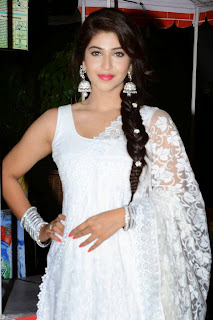 Sonarika Stills At Jadoogadu movie Audio Launch   (17).jpg