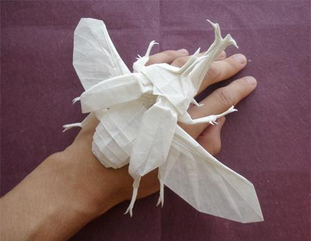 Origami inseto