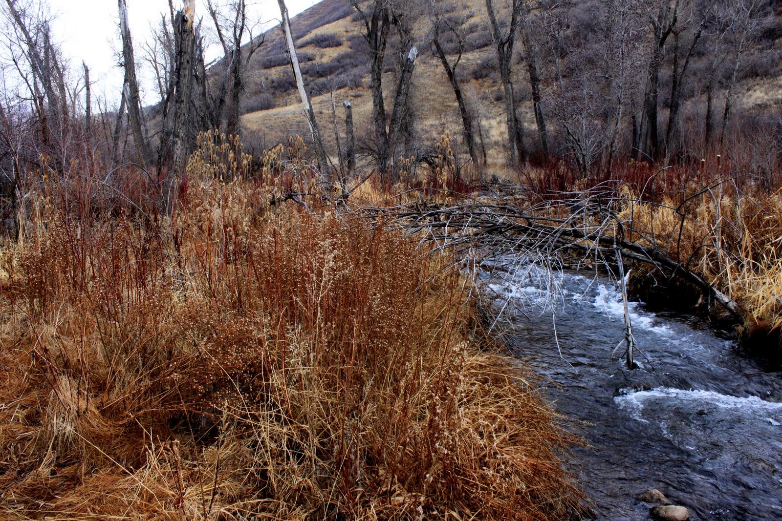 River tales little deer creek for Deer creek fishing