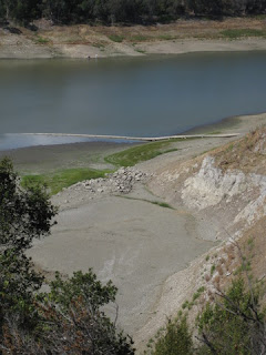 Exposed bed of the shrinking Lexington Reservoir, Los Gatos, California