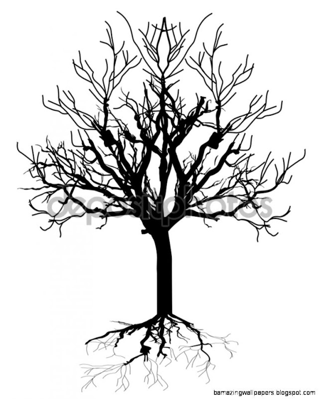 Dead Tree Silhouette — Stock Vector © baavli 64423043