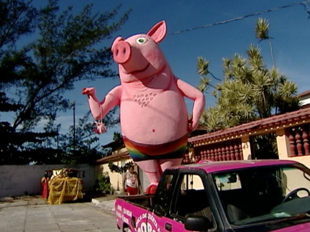 Porco 'Dentinho' virou gay em 2013 (Foto: Reprodução/TV Gazeta)