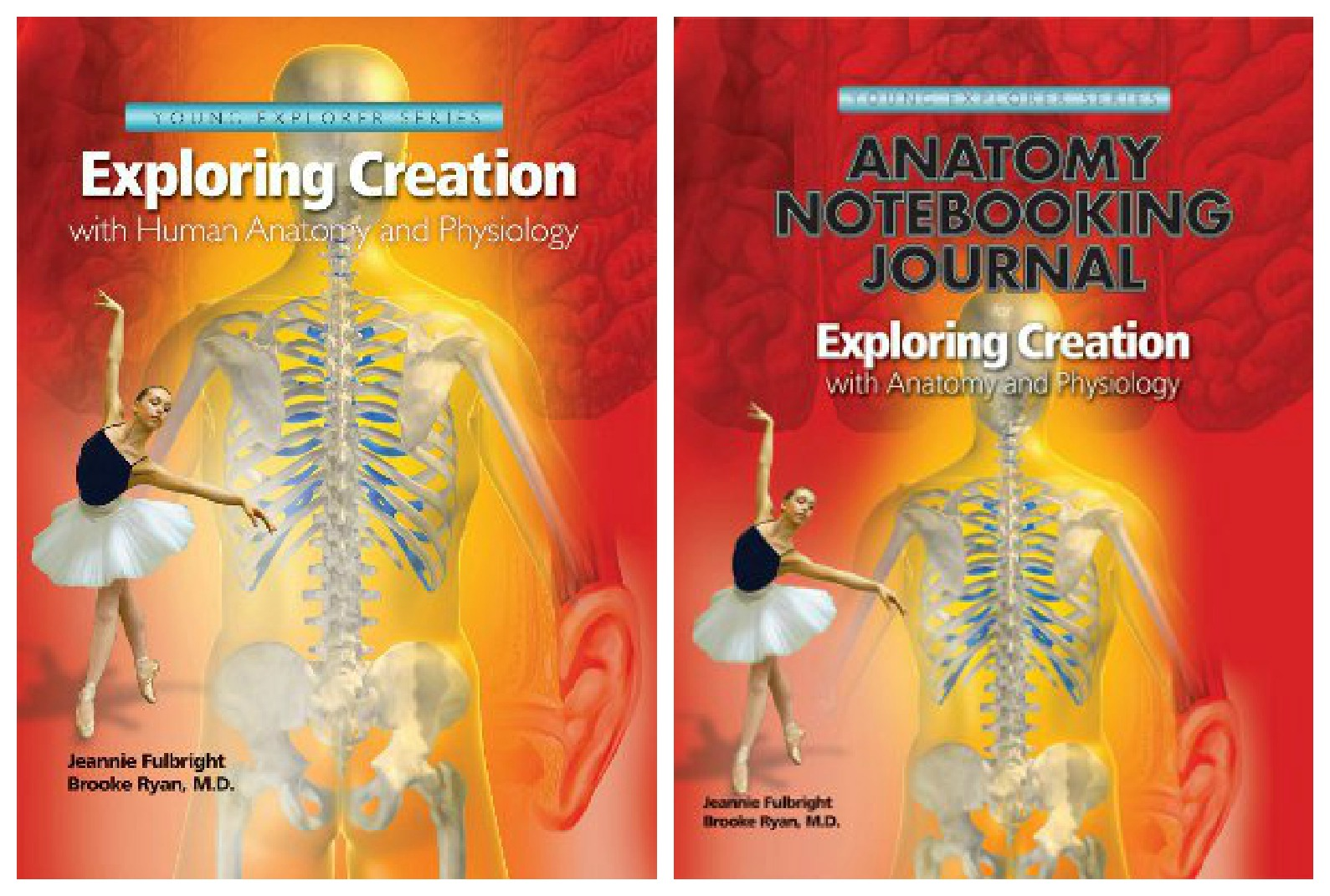 Through the Calm and Through the Storm: Apologia\'s Anatomy and ...