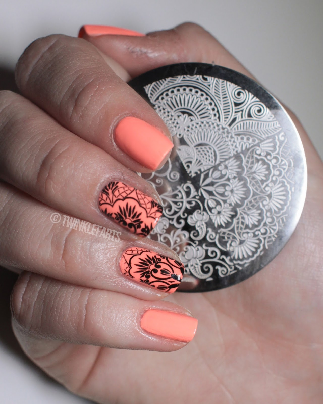 Twinklefarts So You Want To Try Nail Stamping Series Tools Of